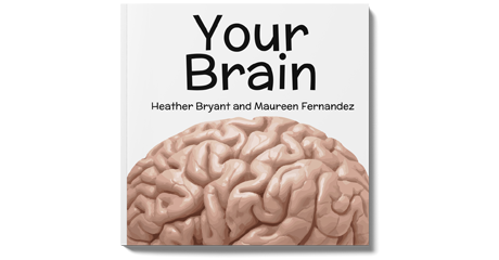 Your Brain Book