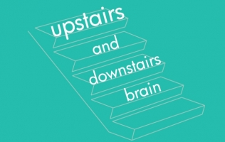 Upstairs And Downstairs Brain