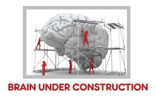 Brain Under Construction Header